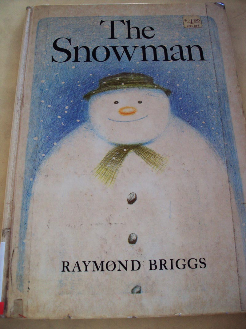 Popular Snowstorm Books