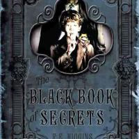 The Black Book of Secrets by F.E. Higgins - A Reflection