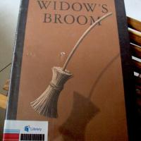 A Wicked Wicked Thing (or not)? The Widow's Broom by Chris Van Allsburg