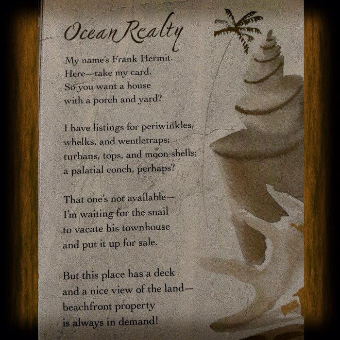 ocean realty