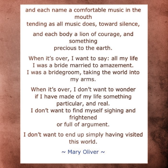"""when death comes mary oliver essay Reviewing dream work (1986) for the nation, critic alicia ostriker numbered oliver among america's finest poets, as """"visionary as [ralph waldo] emerson""""mary oliver was born in 1935 in maple heights, ohio."""