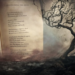 https://gatheringbooks.wordpress.com/2013/10/18/poetry-friday-margaret-atwoods-questioning-the-dead/