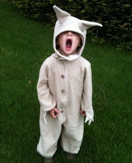 A little kid wearing Max's wolf costume. Click on the image to be taken to the websource.