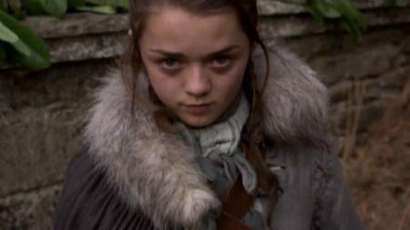 """""""Arya would rather act like a beast than a lady."""" Words uttered by Septa Mordane. Click on the image to be taken to the websource."""