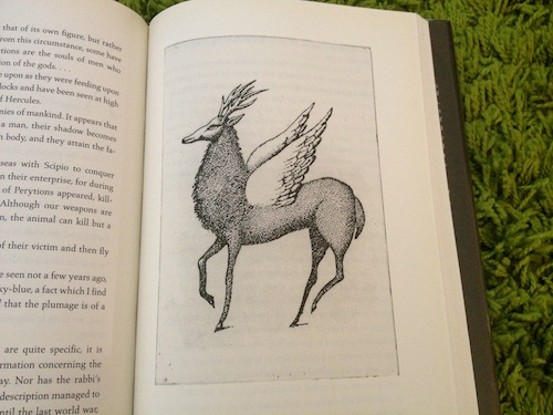 An example of Peter Sis' illustration from The Book of Imaginary Beings by Jorge Luis Borges.