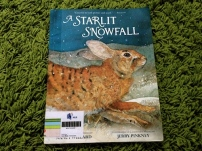 https://gatheringbooks.wordpress.com/2013/12/04/snooze-and-slumber-spring-and-flight-in-willard-and-pinkneys-a-starlit-snowfall/