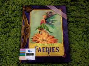 https://gatheringbooks.wordpress.com/2013/12/16/monday-reading-welcome-to-faeryland/
