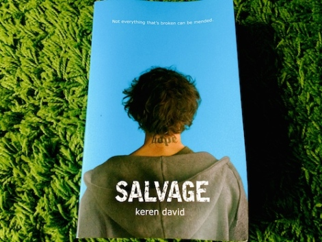 https://gatheringbooks.wordpress.com/2014/04/02/damaged-goods-wounded-souls-and-redemption-in-keren-davids-salvage/