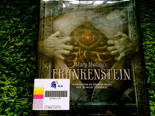 http://gatheringbooks.org/2014/11/27/unremitting-sadness-and-furys-rationale-in-mary-shelleys-frankenstein-the-steampunk-version/