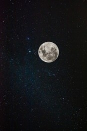http://gatheringbooks.org/2014/10/17/poetry-fridaythe-moon-stares/