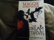 http://gatheringbooks.org/2014/12/04/catching-nightmares-stolen-moments-and-unmoored-by-the-circularity-of-time-in-maggie-stiefvaters-the-dream-thieves/