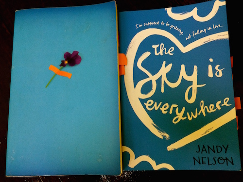 https://gatheringbooks.org/2015/04/06/monday-reading-young-and-fleeting-survivors-guilt-and-coping-with-loss-in-ya-novels-nelsons-the-sky-is-everywhere-and-nivens-all-the-bright-places/
