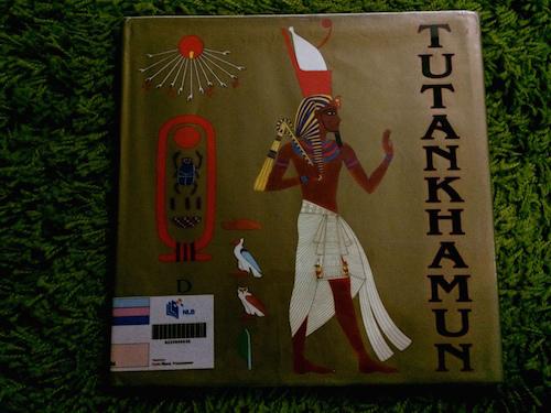 https://gatheringbooks.org/2015/05/27/nonfiction-wednesday-golden-rays-of-tutankhamun-as-captured-by-demi/