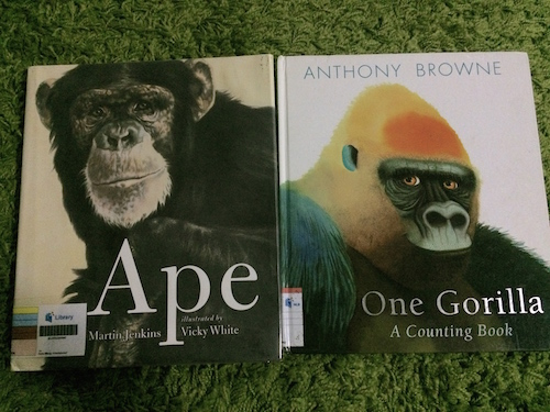 https://gatheringbooks.org/2015/09/02/nonfiction-wednesday-celebrating-our-connectedness-with-all-creatures-in-martin-jenkins-and-vicky-whites-ape-and-anthony-brownes-one-gorilla-a-counting-book/
