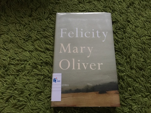 https://gatheringbooks.org/2016/02/12/poetry-friday-celebrating-the-joy-of-loving-in-mary-olivers-felicity/