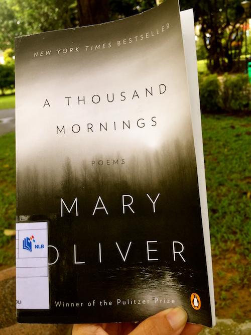 """Poetry Friday] The Beauty of """"A Thousand Mornings"""" by Mary"""