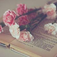 Reading Romance: A Confession